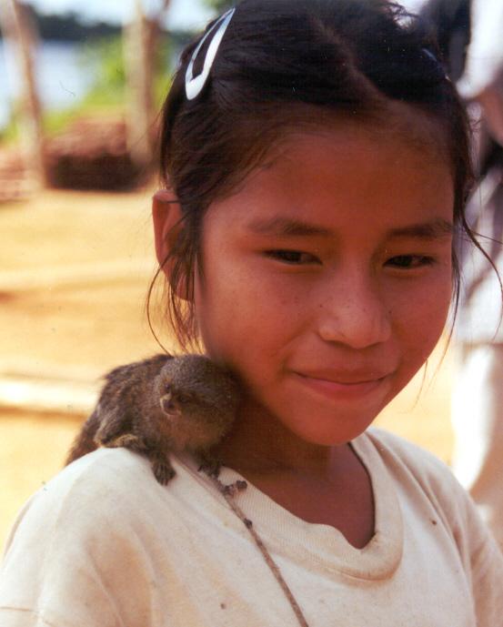 http://www.robertpeterson.org/PeruPhotos/Feb09/marmoset.jpg